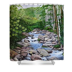 Down Stream  Shower Curtain by Marilyn McNish