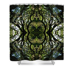 Down The Rabbit Hole Shower Curtain