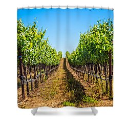 Down The Row Shower Curtain
