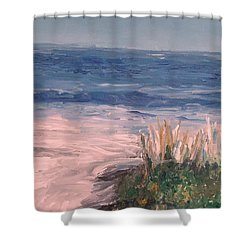 Down The Shore Shower Curtain by Eric  Schiabor