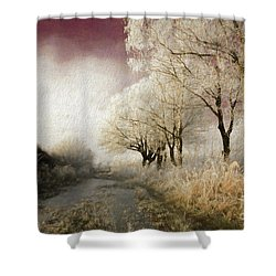 Down Winter Road Shower Curtain