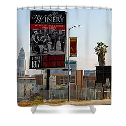 @downtown Los Angeles Shower Curtain