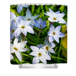 Downtown Wildflowers Shower Curtain