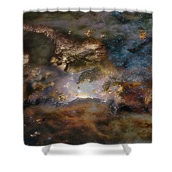 Dragon Watches.... Shower Curtain