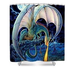 Dragon Causeway Shower Curtain