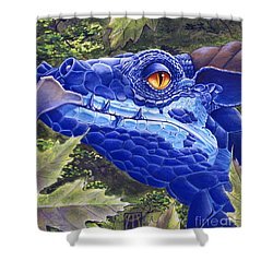 Dragon Eyes Shower Curtain by Melissa A Benson