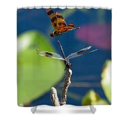 Dragon Fly 195 Shower Curtain