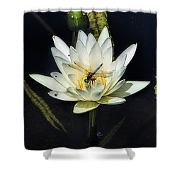 Dragon Fly On Lily Shower Curtain