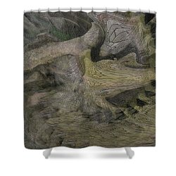 Dragon Fury Shower Curtain