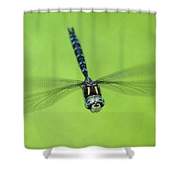 Dragonfly #1 Shower Curtain by Ben Upham III
