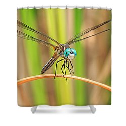 Dragonfly Shower Curtain by Everet Regal