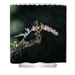 Dragonfly II Shower Curtain