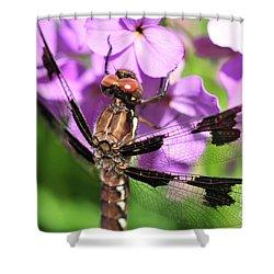 Dragonfly Shower Curtain by Joe  Ng