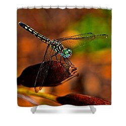 Shower Curtain featuring the photograph Dragonfly On A Flower Pod 002 by George Bostian