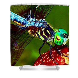Shower Curtain featuring the photograph Dragonfly On A Pitcher Plant 007 by George Bostian