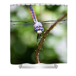 Dragonfly Watching Shower Curtain