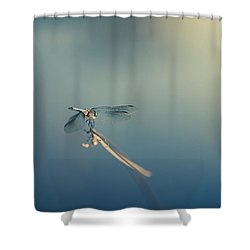 Shower Curtain featuring the photograph Dragonlady by Shane Holsclaw