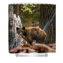 Drakesbad Wakeup Shower Curtain