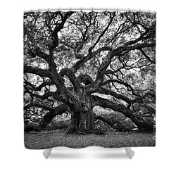 Dramatic Angel Oak In Black And White Shower Curtain