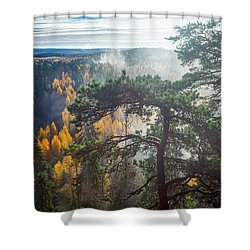 Dramatic Autumn Forest With Trees On Foreground Shower Curtain
