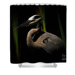 Dramatic Heron Shower Curtain