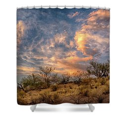 Dramatic Visions Shower Curtain