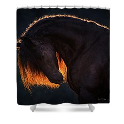 Drawn From The Darkness Shower Curtain