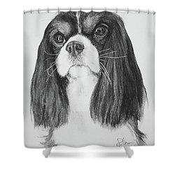 Drayton Shower Curtain