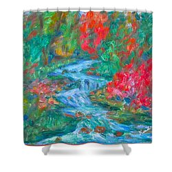Dream Creek Shower Curtain by Kendall Kessler