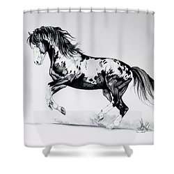Dream Horse Series - Painted Dust Shower Curtain