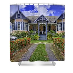 Dream House Shower Curtain