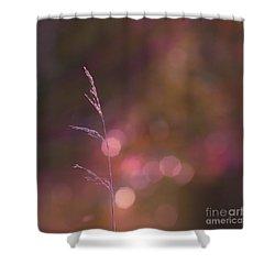 Dream It... Believe It Shower Curtain by Aimelle