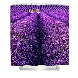 Dream Land Shower Curtain