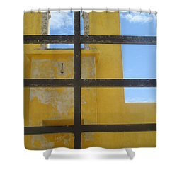 Dream Of Liberty Shower Curtain