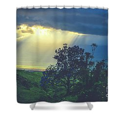 Dream Of Mortal Bliss Shower Curtain by Sharon Mau