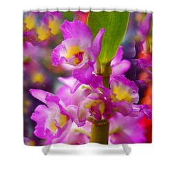 Shower Curtain featuring the photograph Dream Of Spring by Byron Varvarigos
