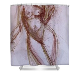 Shower Curtain featuring the painting Dream Theater by Jarko Aka Lui Grande