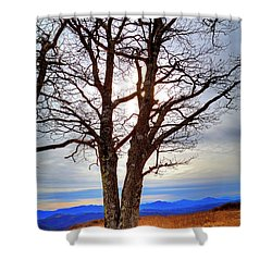 Dreamcatcher Shower Curtain by Dale R Carlson
