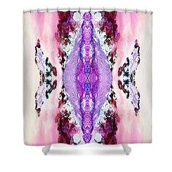 Dreamchaser #2783 Shower Curtain