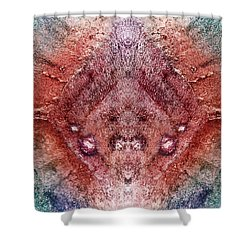 Dreamchaser #4836 Shower Curtain