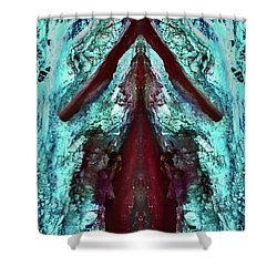 Dreamchaser #4843 Shower Curtain