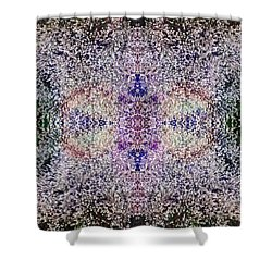 Dreamchaser #4892 Shower Curtain