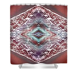 Dreamchaser #4924 Shower Curtain