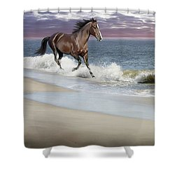 Dreamer On The Beach Shower Curtain by Barbara Hymer