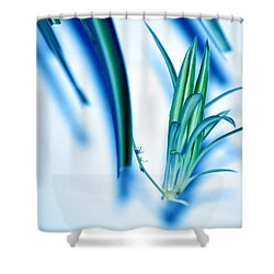Shower Curtain featuring the photograph Dreaming Abstract Today by Susanne Van Hulst