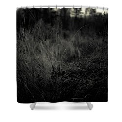 Shower Curtain featuring the photograph Dreaming In by Shane Holsclaw