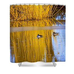 Dreaming Shower Curtain by Leif Sohlman