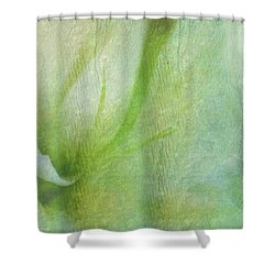 Shower Curtain featuring the photograph Dreaming Of Lily by Wallaroo Images