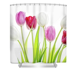 Shower Curtain featuring the photograph Dreaming Of Spring by Rebecca Cozart