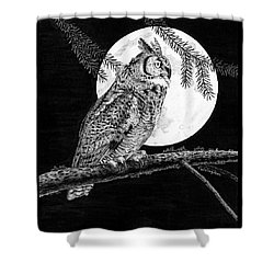 Dreaming Of The Night Shower Curtain